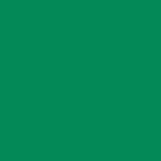 Kleurfolie Donker Groen